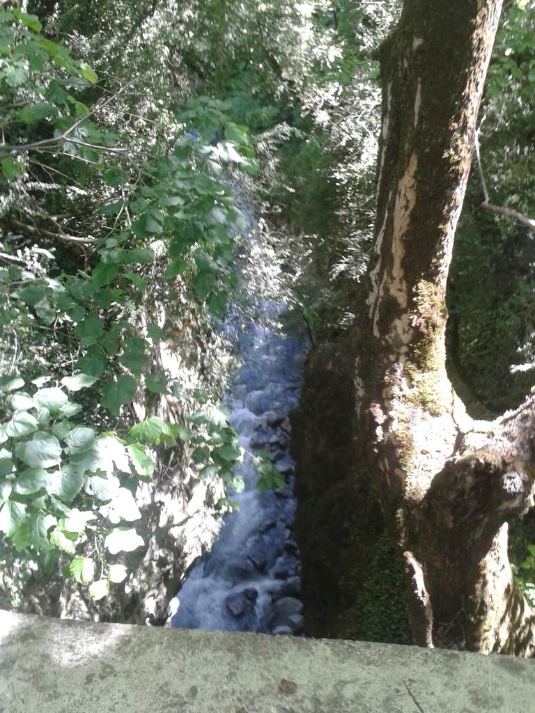 """El río Cinqueta desde """"Puen Pecadó"""""""