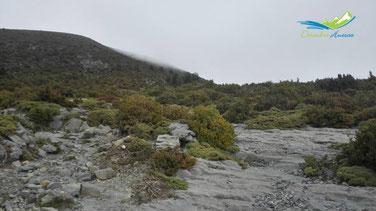 Camino al Mondoto